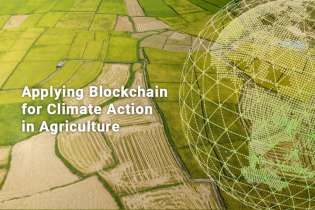 Applying blockchain for climate action in agriculture
