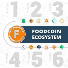 Presentations About the Arrangement of FOODCOIN Begins