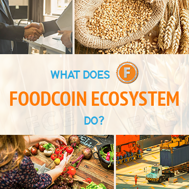 FoodCoin EcoSystem on FOX Business