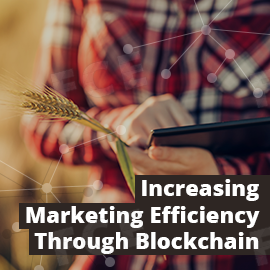Increasing Marketing Efficiency Through Blockchain