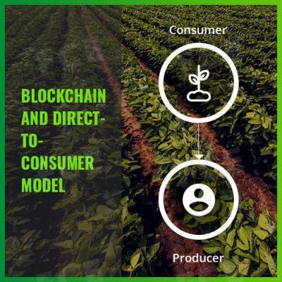 Blockchain and Direct-to-Consumer (D2C) model