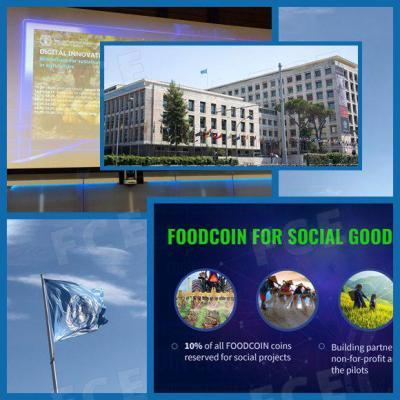 FCE Blockchain CEO Spoke About the Use of Blockchain Technology at FAO Digital Innovation Dialogue