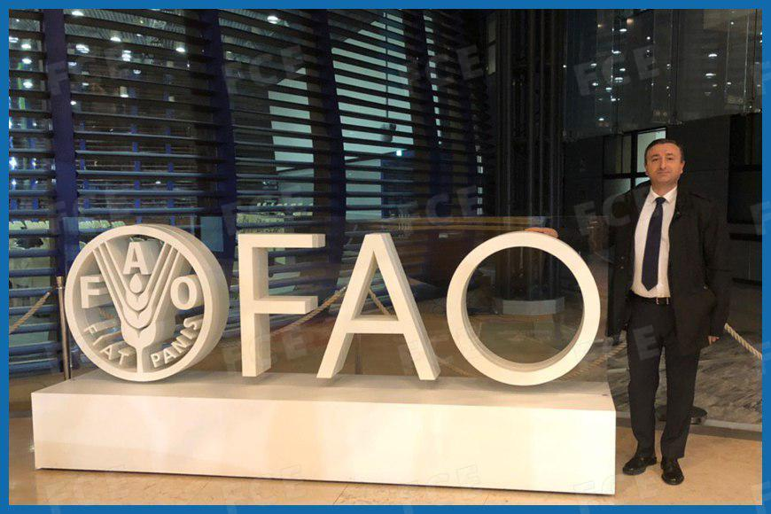 FAO Headquarter, Rome