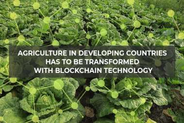 Farming in Developing Countries Should Be Digitized with Blockchain