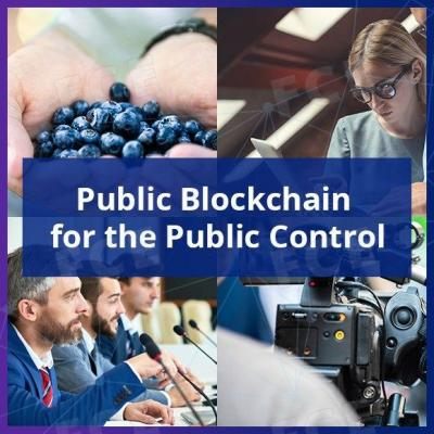 Public Blockchain for the Public Control