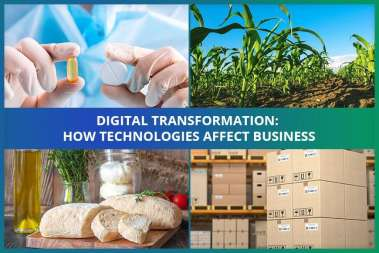 Digital Transformation: How Technologies Affect Business