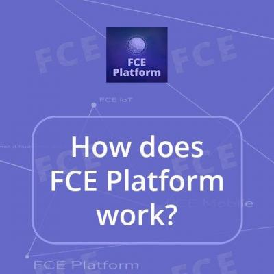 How does FCE Platform work?