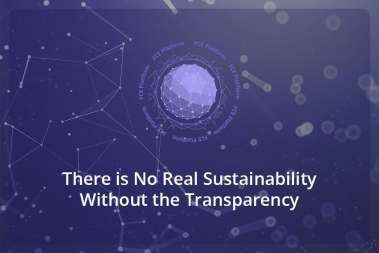 There is No Real Sustainability Without the Transparency
