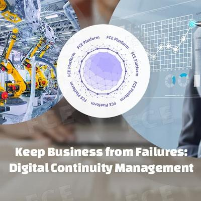 Keep Business from Failures: Digital Continuity Management