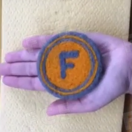 FoodCoin Logo - Felted!