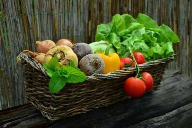 Healthy Trends: Demand Trends of the Organic Products