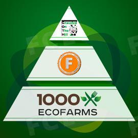 Washington DC Food Buying Club Uses FoodCoin for Purchases on 1000ecofarms